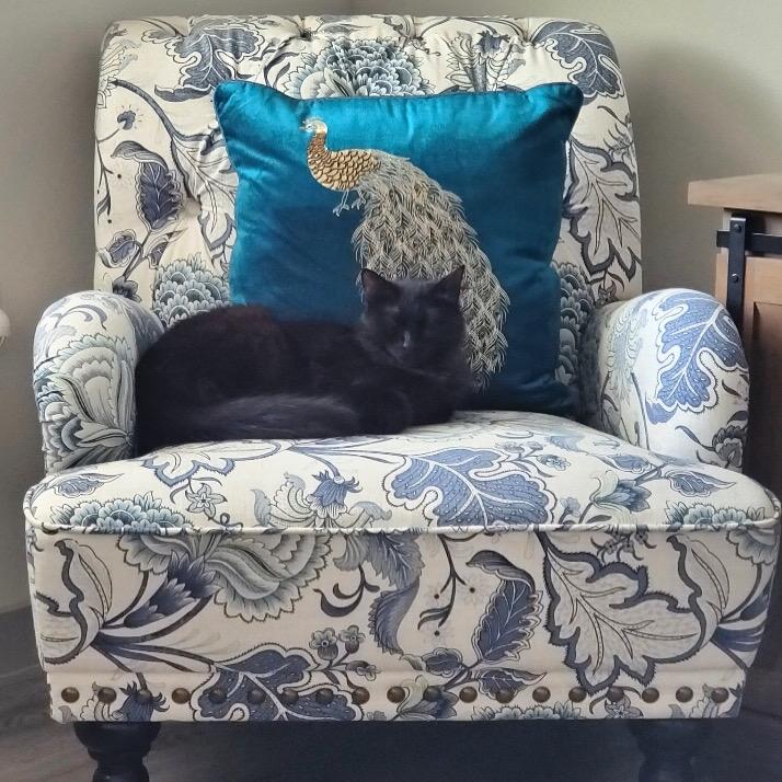 Pandora on Her Throne