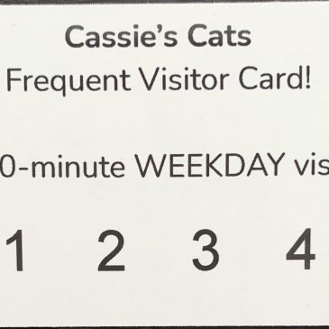 Frequent Visitor Card – Weekdays