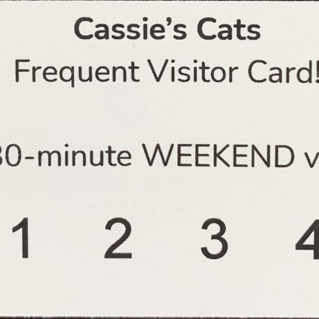 Weekend Frequent Visitor Card